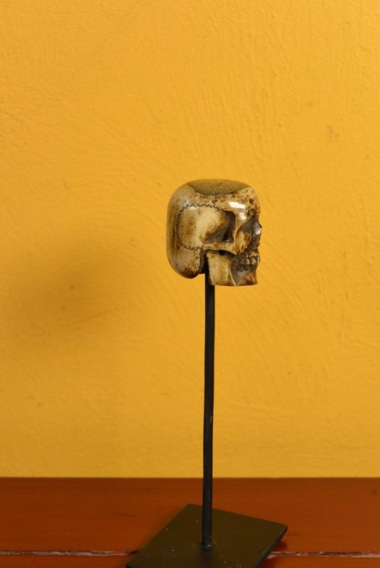 Indonesian Bone Statue Skull 3