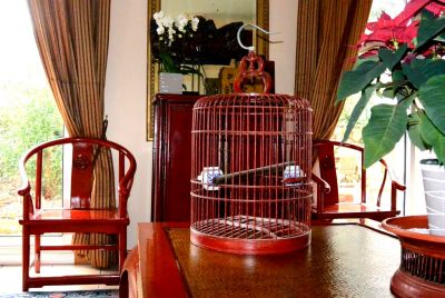 Old Chinese big wooden birdcage