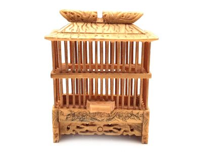 Chinese bone crickets cage with small Crickets
