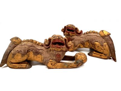 Large and long Chinese Dog of Fo Gold