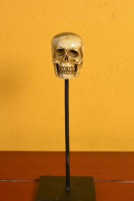 Indonesian Bone Statue Skull 2